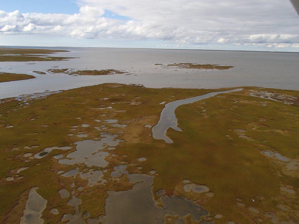 Aerial view of the Yuribey Delta (photo Didier Vangeluwe)