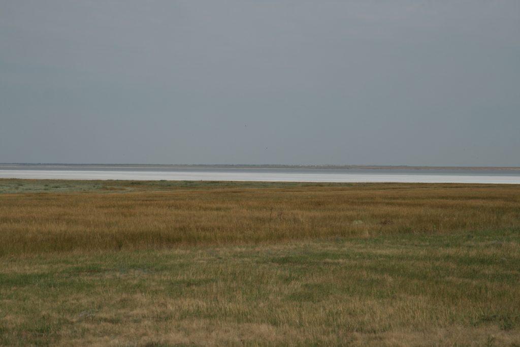 Les lagunes hyper salines de Sivash sont un site de halte primordial des limicoles en migration prénuptiale, (photo Didier Vangeluwe).